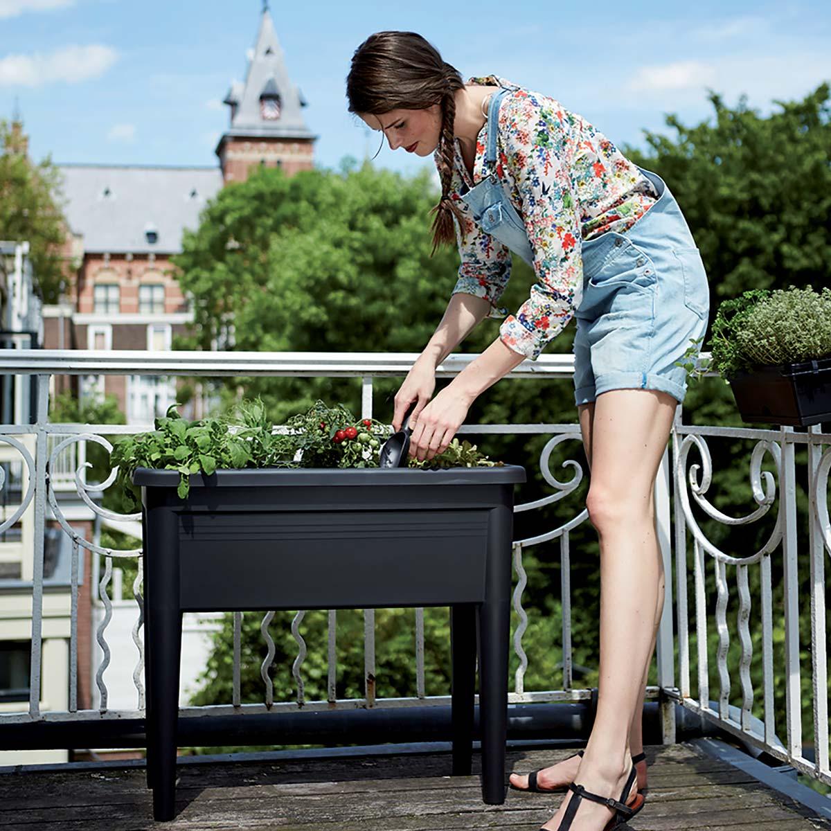 potager pas achat vente de potager pas cher. Black Bedroom Furniture Sets. Home Design Ideas