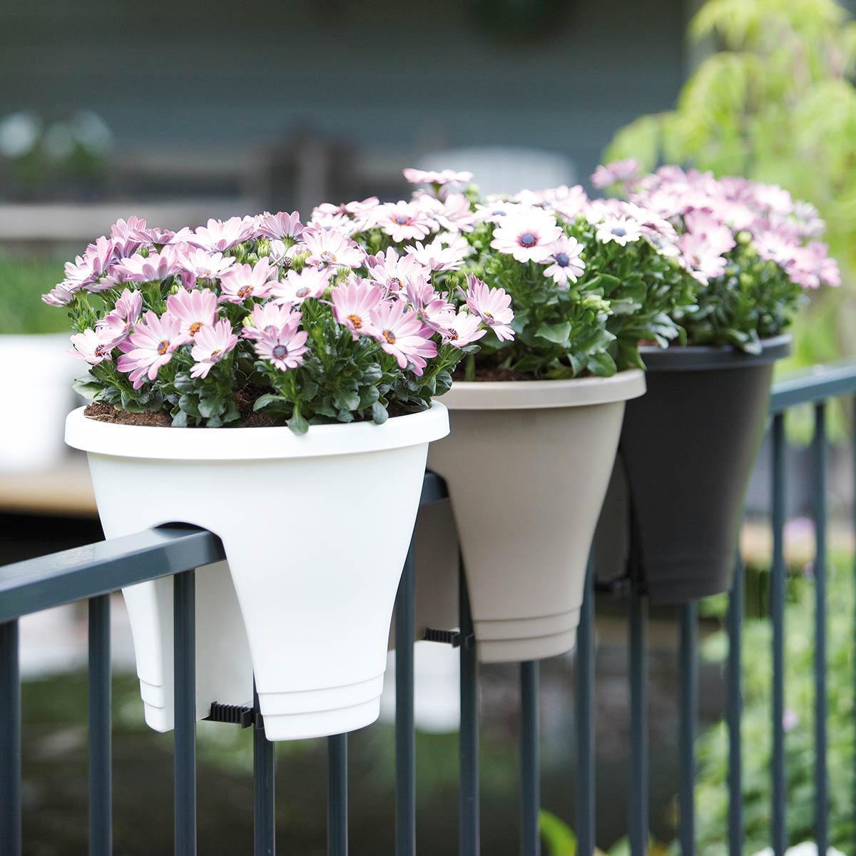 Pot de balcon corsica 30 cm blanc - elho