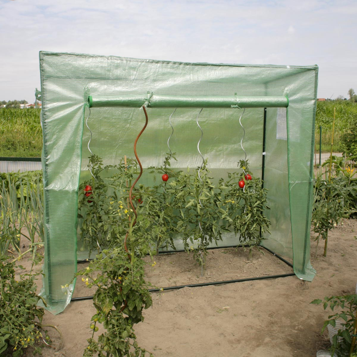 Serre à tomates 1.54 m²